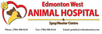 Affordable Veterinary Services!!!