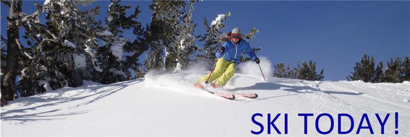 Alpine Sporting Goods