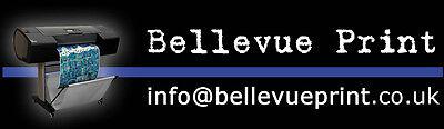 Bellevue Print