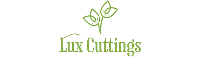 lux_cuttings_hydroponics