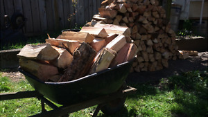 Camp/Holiday Firewood