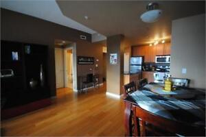 Executive, 2 bdrm downtown condo with great view!