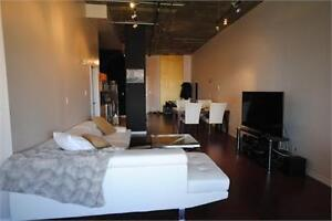 Fully Furnished One Bedroom Suite in Downtown!