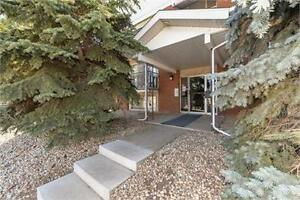Newly Renovated, 1 bedroom on popular whyte Ave