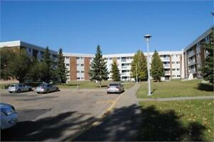 Great 2 bedroom furnished suite in South West Edmonton!