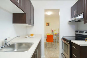 Large 2 Bed Apt for Rent- Renovated & Pet-Friendly!