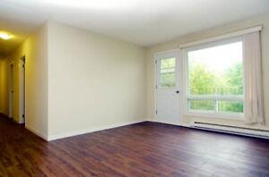All Inclusive 2 Bedroom in Downtown Trenton