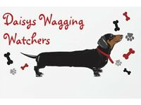 Pet Sitting/Boarding and Walking Services Gateshead/Newcastle Surrounding Areas