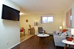 Newly Renovated! | 2 Bedroom in Trenton With Onsite Laundry