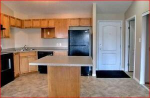 South Terwillegar Condo: 2 bdrm, 2 bath