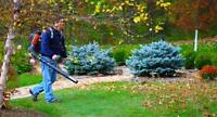 Need a fall cleanup? CALL US TODAY