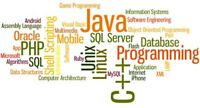 Online(Skype) Programming Tutoring(Java/C/C++/C#/PHP) available
