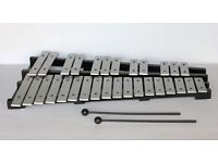 Glockenspiel with carry case.