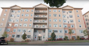 5 BR Condo Units Investment in Waterloo. Rental Guarantee $4020