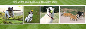 Volunteers/ People to Join Our Group Meeting At Dog Park Sep 2nd