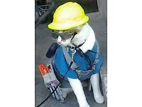 Top Cat MultiTask Handyman services, 60 seconds response , Cheapest in North West, All work taken