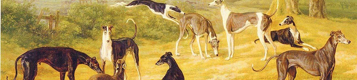 greyhoundgreetings