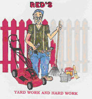 Snow Shoveling, Yard Clean-up, odd jobs