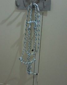 Rope halters For Sale $30 each Emerald Central Highlands Preview