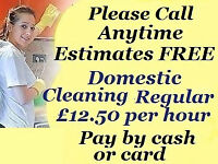 Professional Domestic Cleaning * Carpet Cleaning * End of Tenancy Cleaning * Pay by cash or card