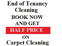 Domestic Cleaning Regular £12.50 p/h NO AGENCY FEES on top hourly rate * Carpet Cleaning from £20.00