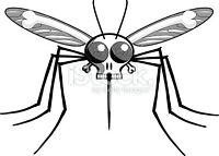 A Mosquito and Tick Free Yard!