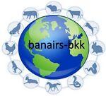banairs-bkk