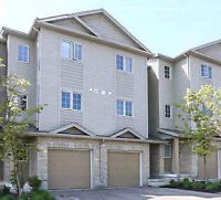 Beautiful 3 Bedroom townhouse for rent!