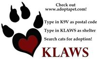 KLAWS: Now also on Adoptapet.com & Petfinder with our rescues!