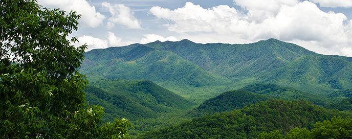 Chelly Mountain Treasures