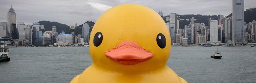 DuckDuckGoods