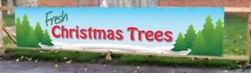 Fresh Christmas Trees Sales Banners 15ft x 3 ft