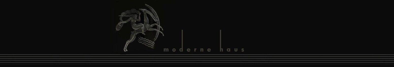 moderne_haus