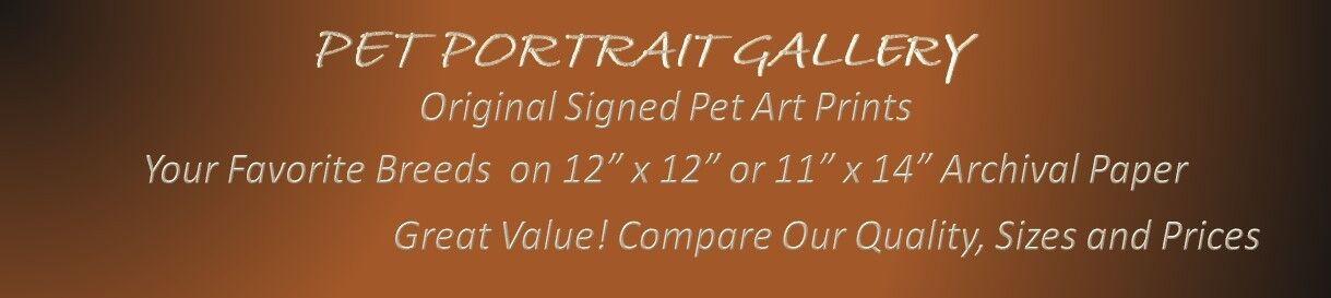 Pet Portrait Gallery