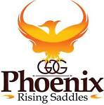 Phoenix Rising Saddles