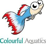 Colourful-Aquatics