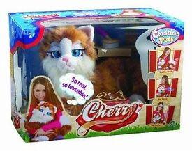 brand new cherry the cat