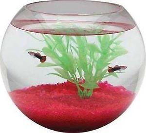 fish bowl ebay. Black Bedroom Furniture Sets. Home Design Ideas