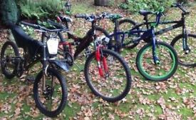 4 Bikes (teenager sizes)
