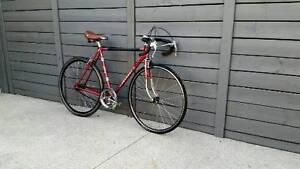 Peugeot Single Speed Road Bike(21'frme)