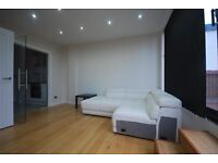 SPACIOUS MODERN 1 BEDROOM FLAT WITH PRIVATE TERRACE NEAR WEMBLEY CENTRAL TUBE, TRAIN & SHOPS
