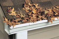 Leaves Removal and Eavestrough Cleaning