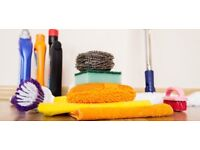 Professional House Cleaner with Experience