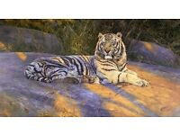 """Absolute BARGAIN Limited edition (209 of 1500) framed print """"The Great White Tiger"""" by Anthony Gibbs"""