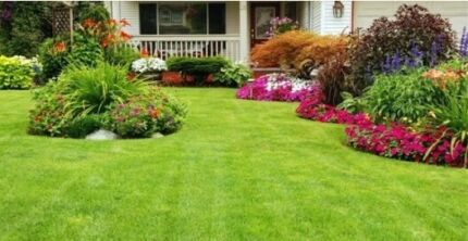 Affordable Lawn Mowing and Gardening Service Leda Kwinana Area Preview