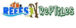 Reefs N Reptiles we now ship !
