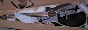 Acoustic electric hybid guitar.