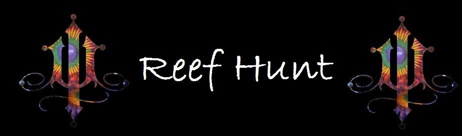Reef Hunt