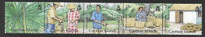 CAYMAN ISLANDS SG1206a 2009 SILVER THATCH PARM MNH
