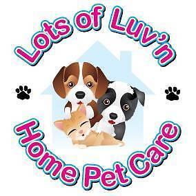 Pet Sitting,Overnight Pet Sitting, Dog Boarding, Dog Walking, Mudgeeraba Gold Coast South Preview